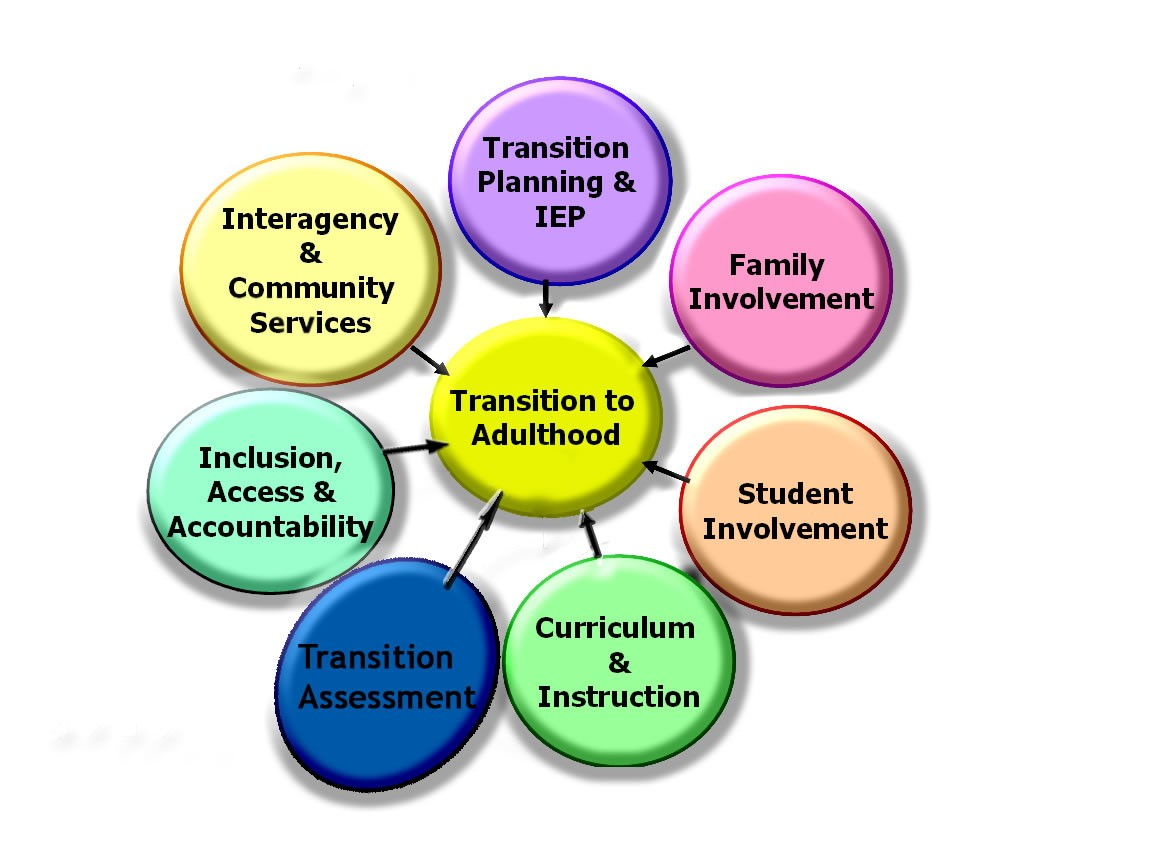 Transition to Adulthood graph